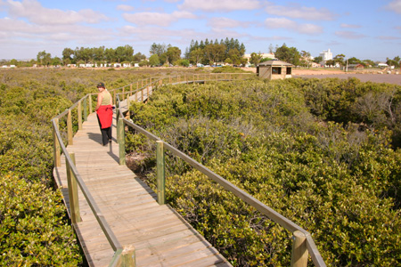 Cowell Boardwalk